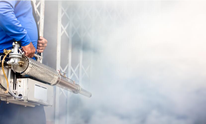 6 remedios caseros para mantener los insectos alejados de tu casa