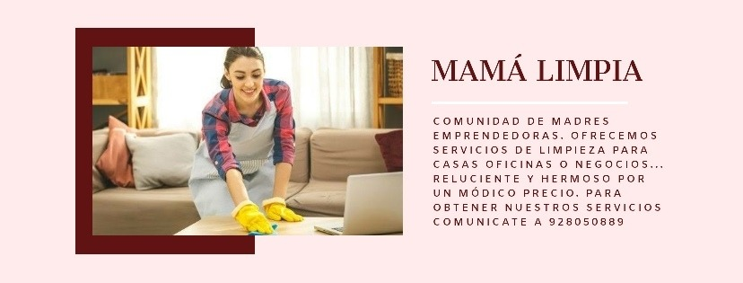 Limpieza de casas, departamentos, oficinas o negocios