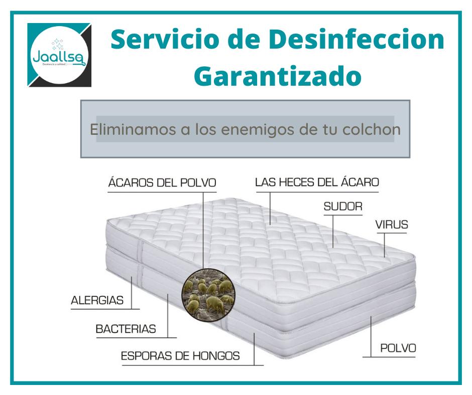 Jaallsa: Limpieza y Desinfección