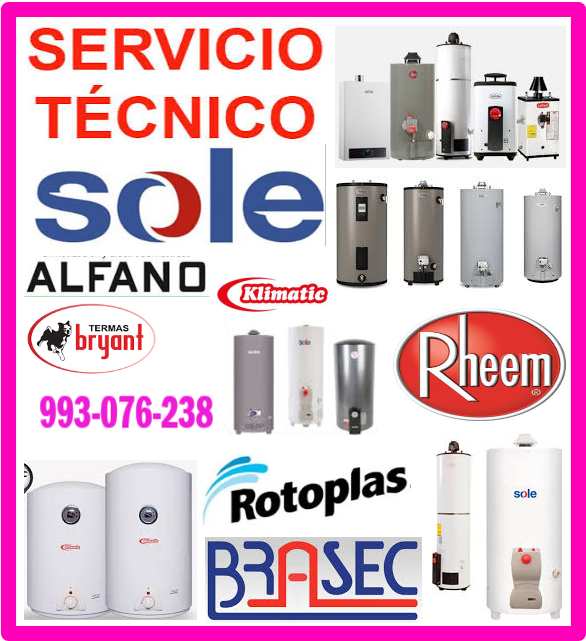 Servicio técnico de termas a gas 993076238